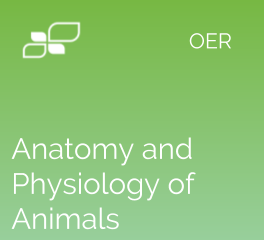 Anatomy and Physiology of Animals