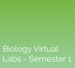 Biology Virtual Labs – Semester 1: eScience Labs