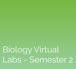 Biology Virtual Labs – Semester 2: eScience Labs
